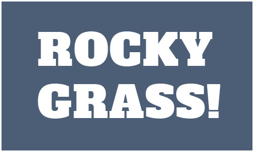 2016 RockyGrass Live Broadcast and Stream